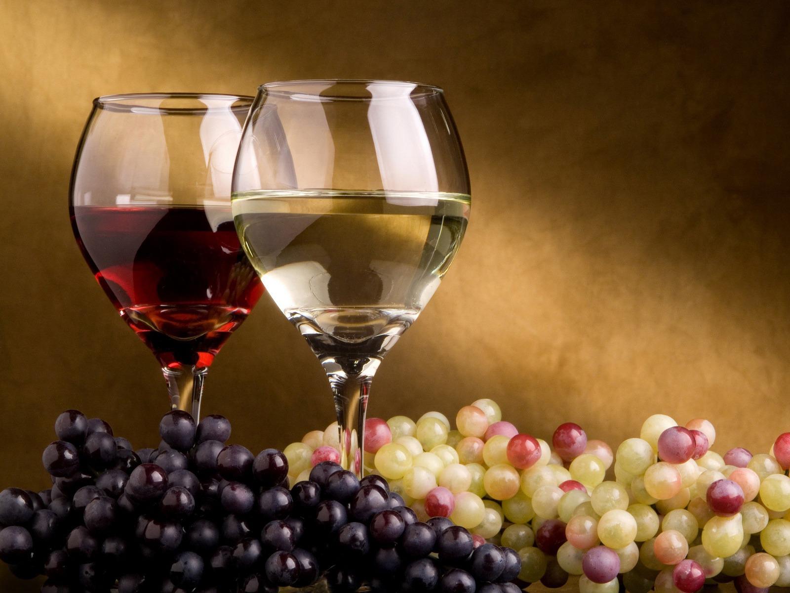 Il corso di introduzione al vino e approfondimento dei suoi abbinamenti col cibo