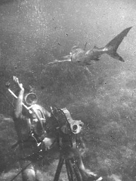 Cinematografia subacquea a Monaco