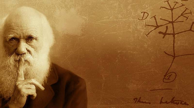 Innumerevoli forme da un semplice inizio: Darwin Day