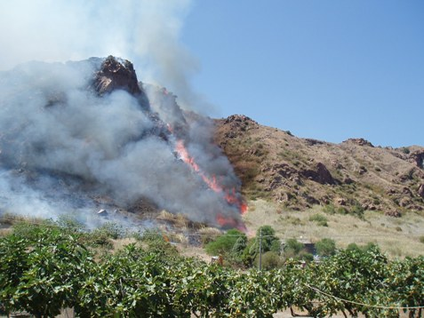 Vulcano, incendio minaccia villaggio turistico