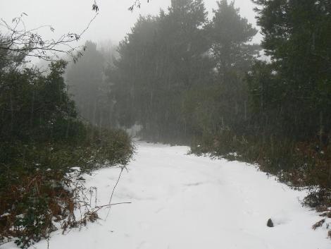 Salina, tanta neve sul Monte Fossa delle Felci