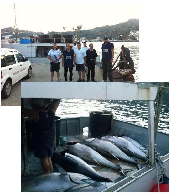 Maxi sequestro di tonno al largo di Stromboli